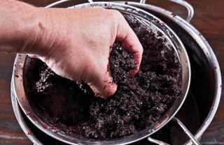 Создание закваски для вина