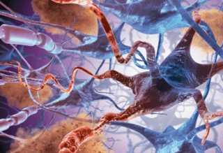 Воздействие токсина на клетки мозга