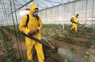 ащитная форма для работы с пестицидами
