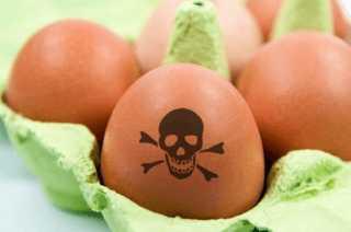 Вред от яиц