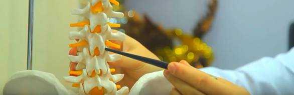 Шейный отдел позвоночника: строение, болезни, боли