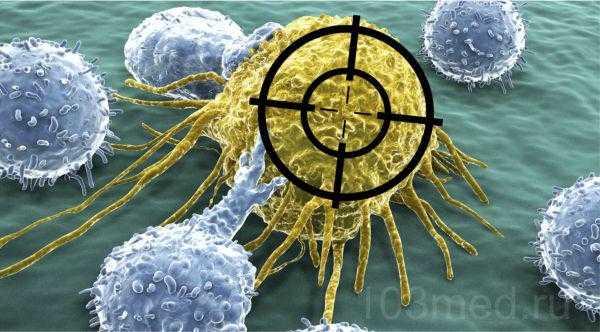 Таргетная терапия в онкологии