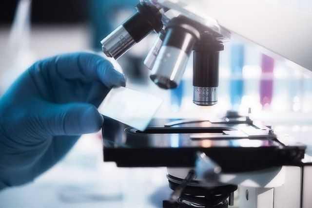 анализ секрета простаты норма лейкоцитов