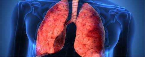 Абсцесс легкого – лечение и симптомы острого и хронического абсцесса