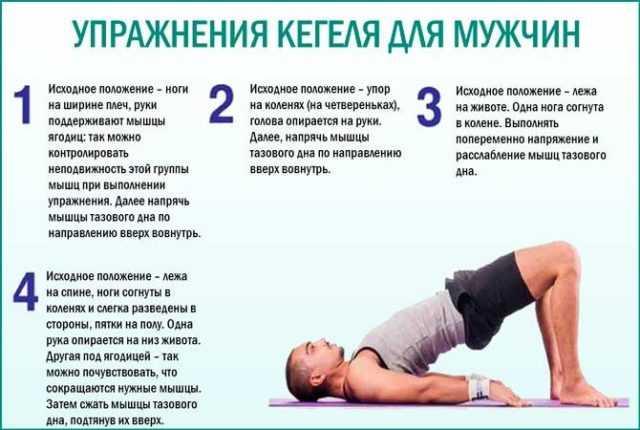 упражнения кегеля для повышения потенции у мужчин